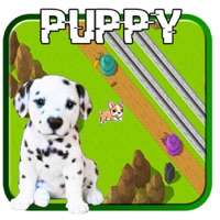 Codes for Puppy Top Down Traffic Road Crossing Hack
