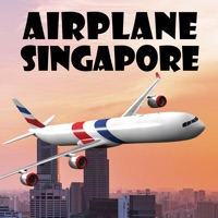Codes for Airplane Singapore Hack