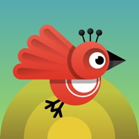Codes for Eco Birds - Quest to Save the Environment & Stop Climate Change Hack