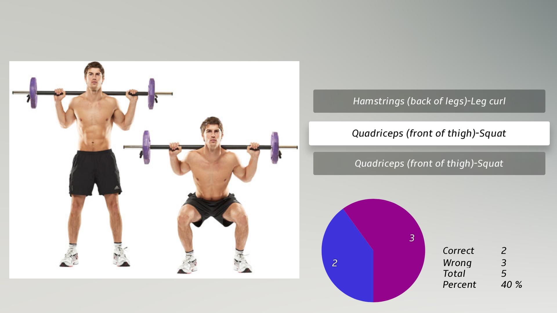 Body Building Exercises + screenshot 20