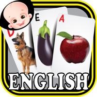 Codes for Preschool Kindergarten Kids English ABC Alphabets & Number Flash Cards Hack