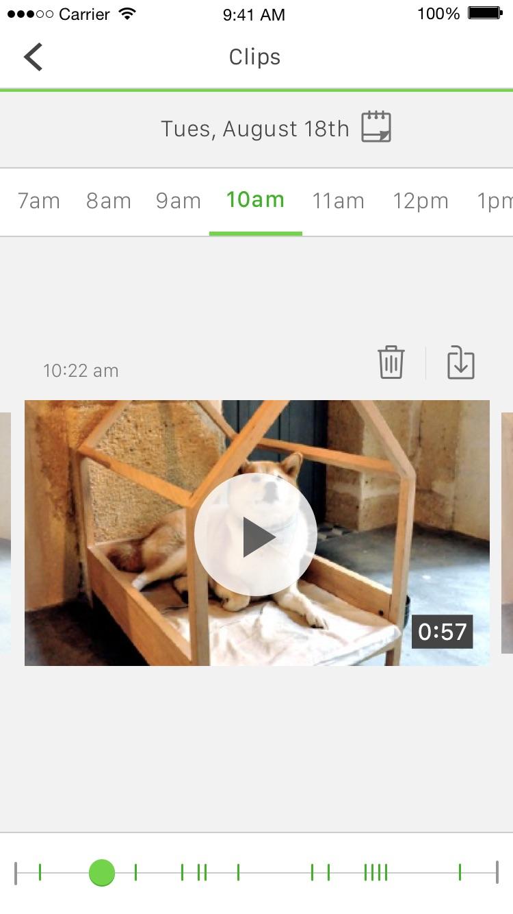 Belkin NetCam Screenshot