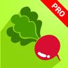 Phuoc Nguyen - 2000+ Vegetable Recipes Pro artwork
