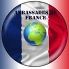 Ambassade de France icon