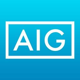 AIG CyberEdge