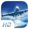 Big Bee - Cargo Plane Simulator