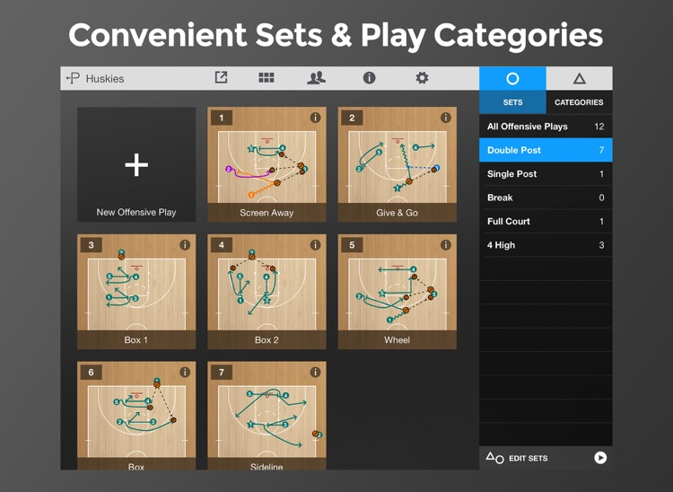 Basketball Playmaker Playbook