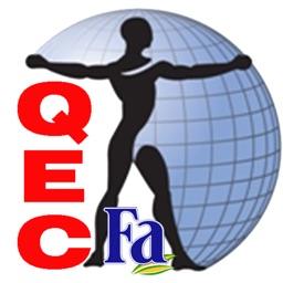 HSE.Ergo.QEC(Persian)