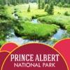 Prince Albert National Park Guide