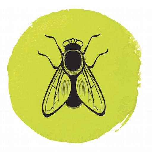 BARRE FLY icon