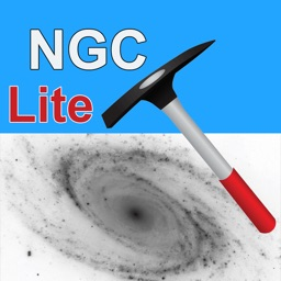 NGC Miner Lite