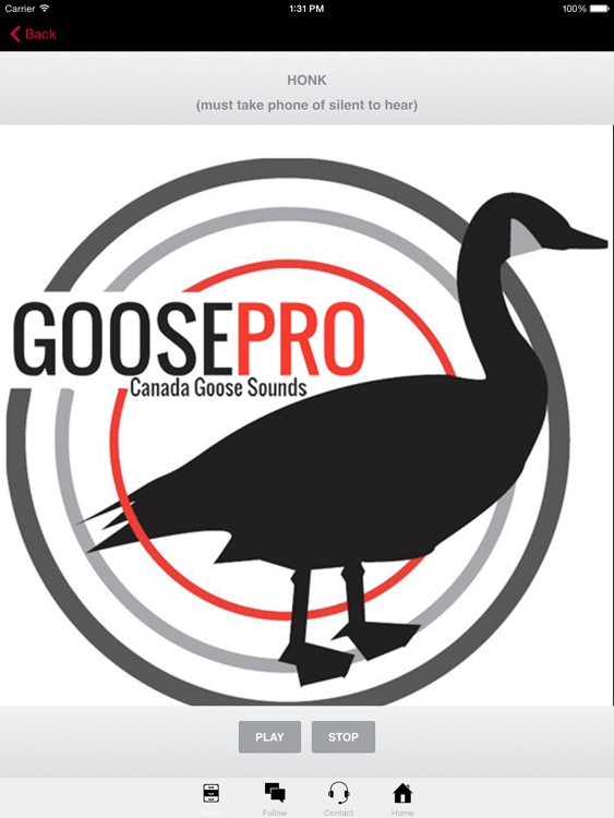 Goose Hunting Calls-Goose Sounds Goose Call App