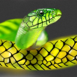 Snakes Encyclopedia Plus+