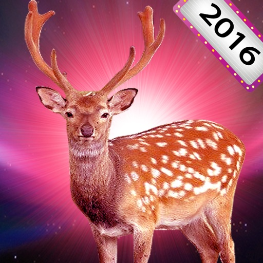 2016 New deer hunter 3D- sniper shooter in wild fantasy world