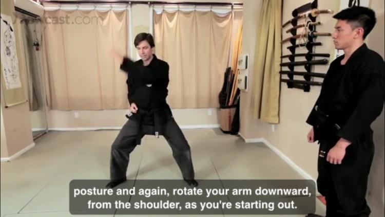 Ninjutsu Skills