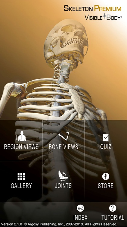 For Organizations - Skeleton Premium