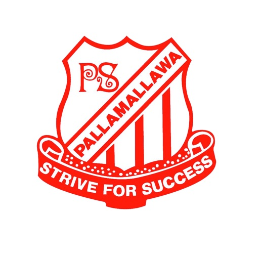 Pallamallawa Public School