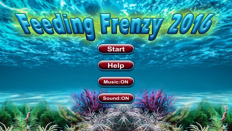 Feeding frenzy 2016 hd by hoang trinh for Feed and grow fish free no download