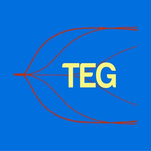 TEG Interpretation Helper