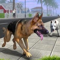 Codes for Dog Simulator. Best Puppy Evolution Simulation For Kids Hack