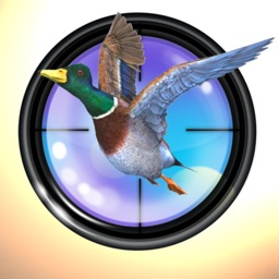 Shooting Game Duck Hunter 3D: Animal (Birds) Hunting - Best Time Killer Game of 2016