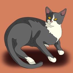 Kitten Soundboard & Cat Tracker