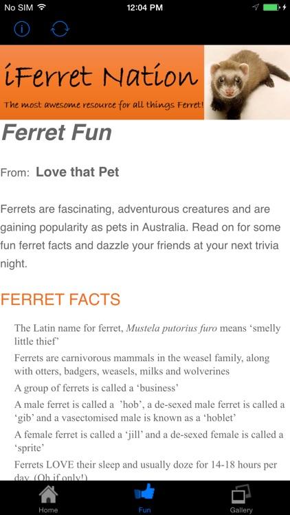 iFerret Pet Care
