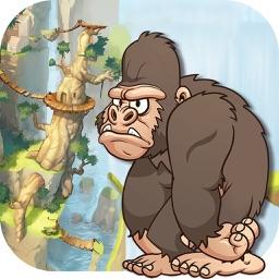 Gorilla Run 2015