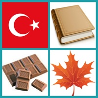 Codes for Learn Turkish: Word Quiz Hack