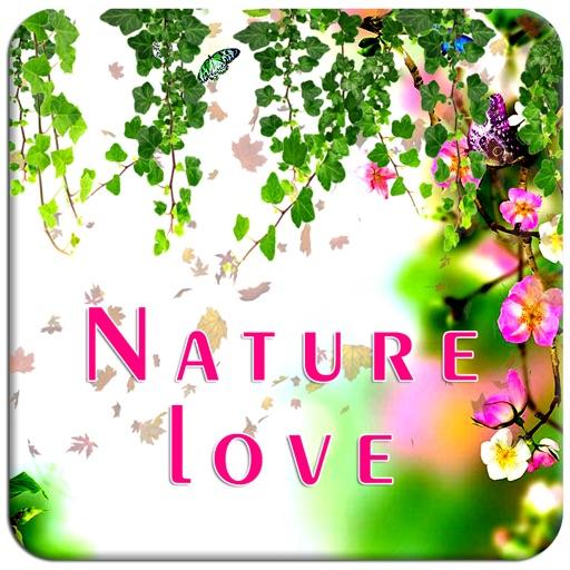 Make Nature Photo Frames