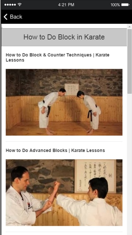 Karate Techniques - Learn Basic Karate Moves Easily screenshot-3