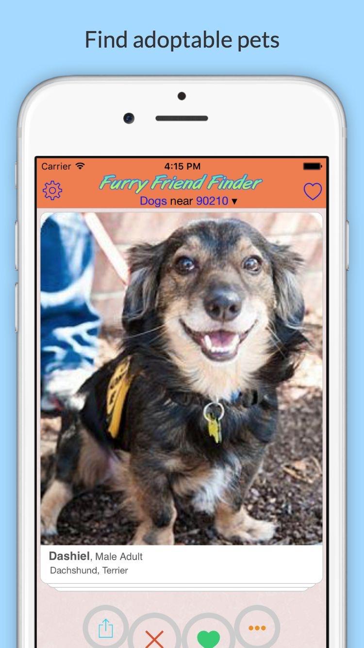 Furry Friend Finder - Animal Rescue Pet Adoption
