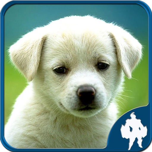 Animals Jigsaw iOS App