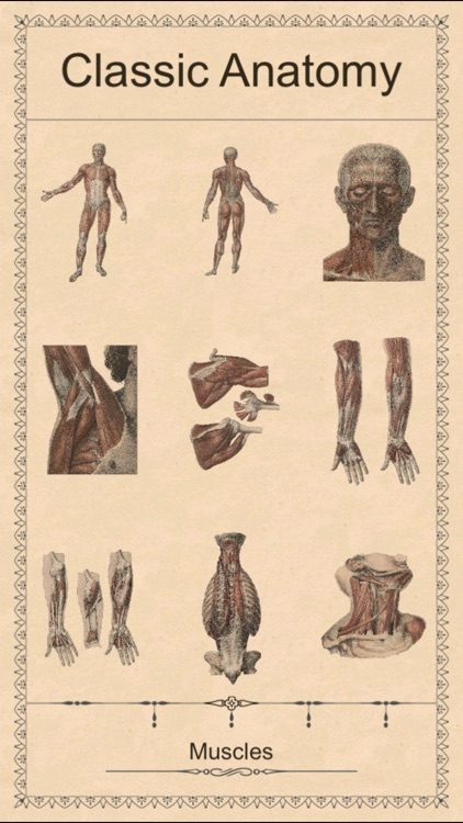 Classic Anatomy screenshot-3
