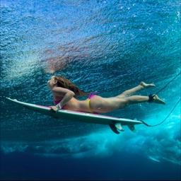 Surf Edition