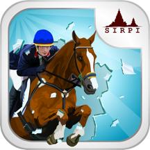 Show Horse Rider