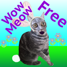 Activities of Wow Meow Bunny Cat - Free