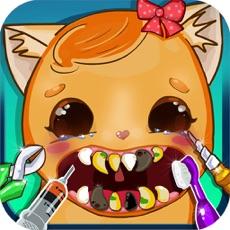 Activities of Simulator Dentist Cat