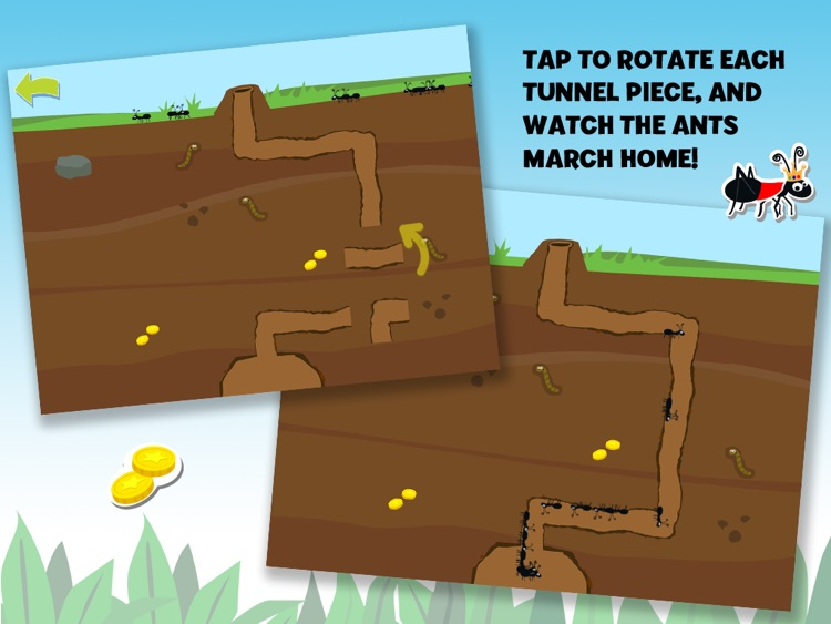 Brainy Bugs Preschool Games screenshot-3
