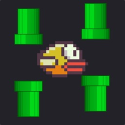 Jumpy Bird - Night Mode Tiny Bird Fly Adventure