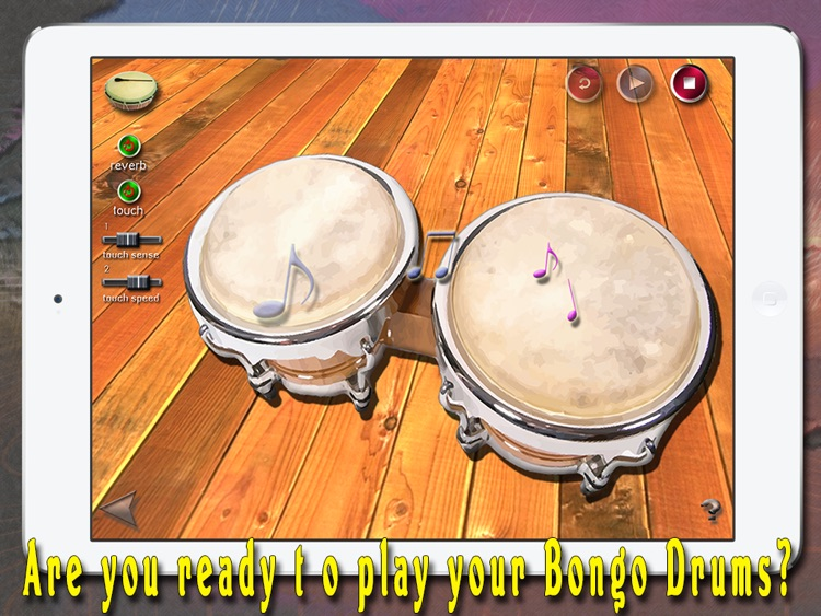 i Play My Cuban Bongo Drums screenshot-1