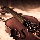 Violin Lessons - Learn How To Play Violin icon