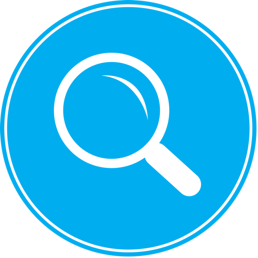 Multiple Search Engines