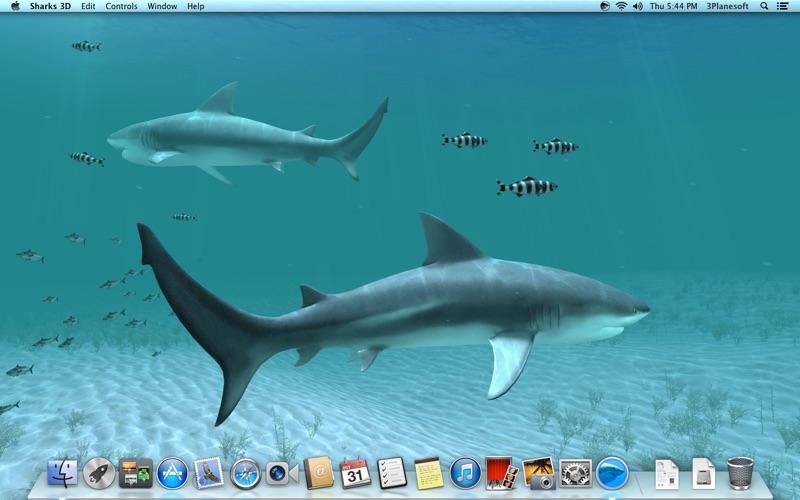 Screenshot #2 for Sharks 3D