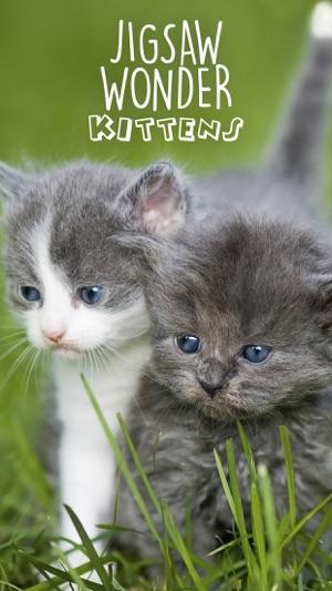 Jigsaw Wonder Kittens Puzzles für Kinder Screenshot