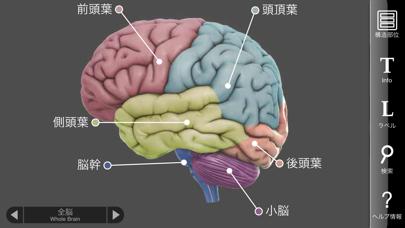 3D Brainのおすすめ画像1