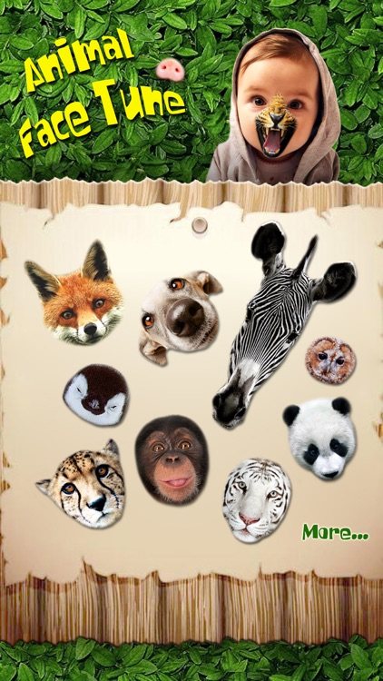 Animal Face Tune - Sticker Photo Editor to Blend, Morph and Transform Yr Skin with Wild Animal Textures