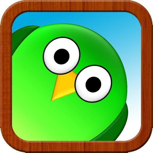 Bop Birds