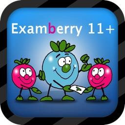 11+ Verbal Reasoning - Examberry