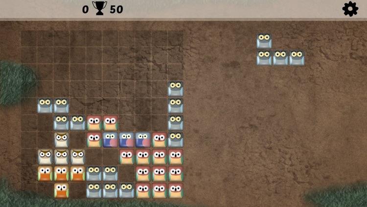 Block Match Puzzle